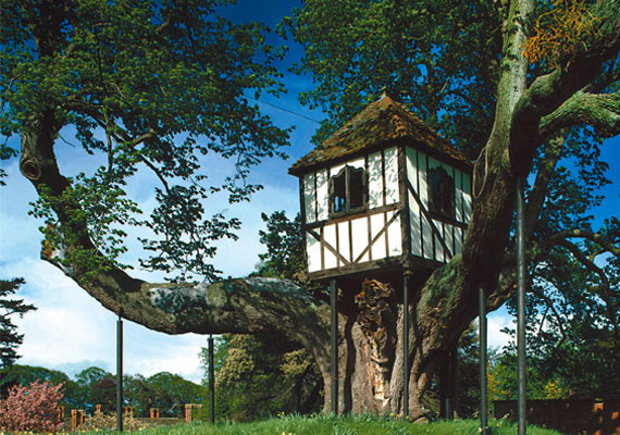 Tree-House-at-Pitchford
